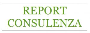 Report Consulenza posaqualificata